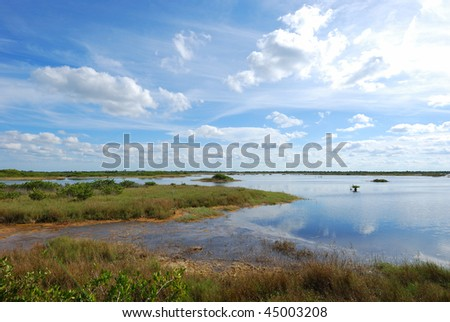 Merritt Island National Wildlife Reserve - stock photo