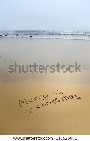 merry christmas written in sand on beach with dogs in sea - stock photo