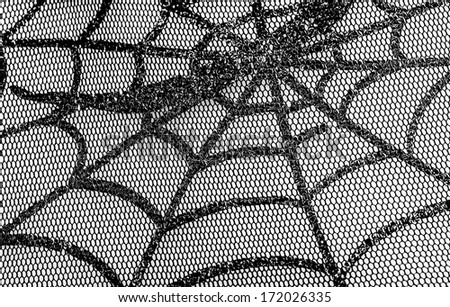 Mesh Web photographed close up for background on halloween
