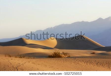 Mesquite flat dunes - stock photo