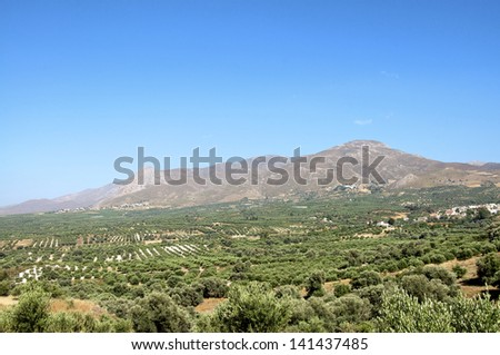 Messara plain in southern Crete. Agriculture and Olive Groves determine the picture on Crete. In the background the Asterousia mountains