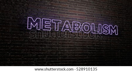 METABOLISM -Realistic Neon Sign on Brick Wall background - 3D rendered royalty free stock image. Can be used for online banner ads and direct mailers.