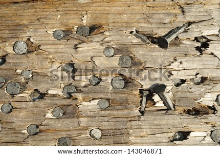 Metal and Wood . Close up image of nail heads in a plank. - stock photo