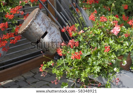 Metal helmet in the flower - stock photo