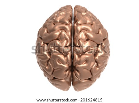 metallic brain on white background with clipping mask  - stock photo