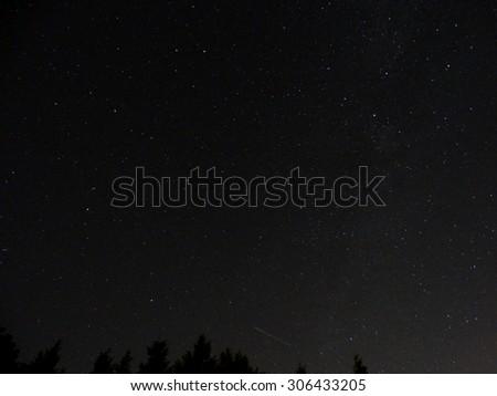 Meteor above treeline - stock photo