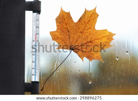 Meteorology, forecasting and autumn weather season concept - thermometer and yellow maple leaf stuck to wet the glass window from the rain drops - stock photo