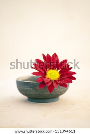Metta or Lovingkindness. A simple flower in a bowl. - stock photo