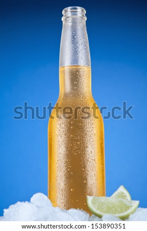 Mexican beer sitting on ice over a blue background. - stock photo