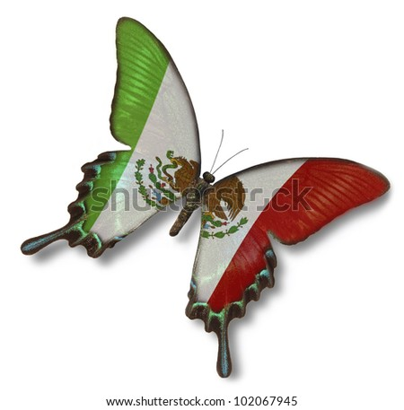 Mexican flag on butterfly isolated on white - stock photo