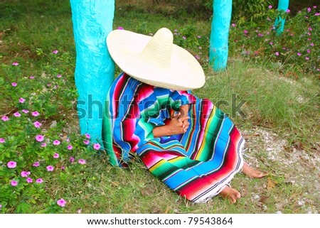 Mexican lazy sombrero hat man poncho nap in garden typical topic - stock photo