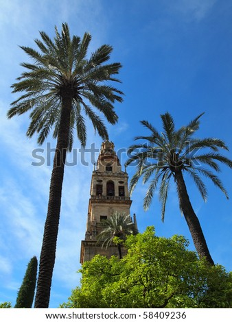 Mezquita and palm trees in Cordoba, Spain - stock photo