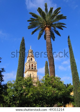 Mezquita yard, Cordoba, Spain - stock photo