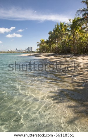 Miami Biscayne Bay island beach. - stock photo