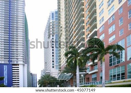Miami downtown city with colorful buildings and palm trees - stock photo