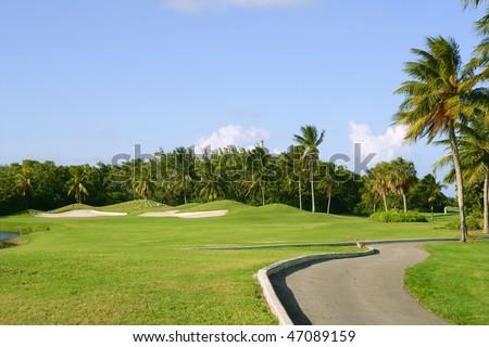 Miami Key Biscayne Golf tropical green grass field palm trees - stock photo