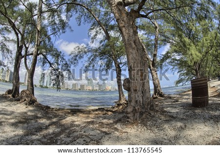 Miami - Park with Skyscrapers background - stock photo