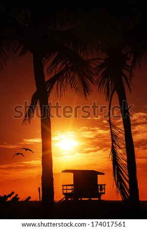 Miami South Beach sunrise with lifeguard tower and palm tree - stock photo