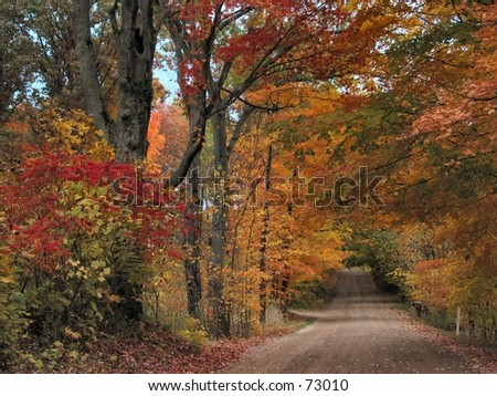 Michigan Road in the Fall