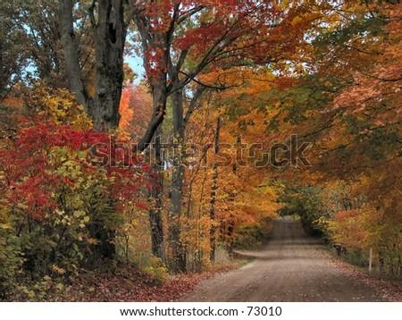 Michigan Road in the Fall - stock photo