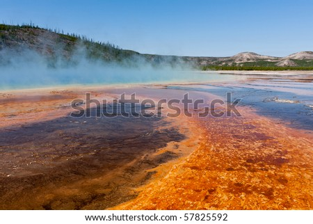 Microbial mats color the foreground as steam rises from Yellowstone's Grand Prismatic Spring