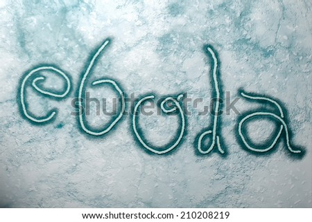 Microscopic view of Ebola Virus - stock photo