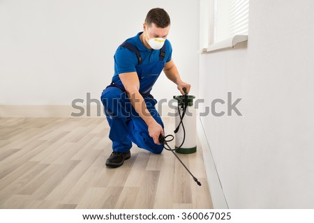 Mid adult male worker spraying pesticide on wall at home - stock photo