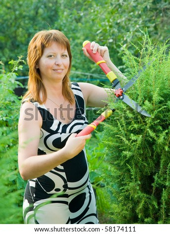 Mid adult woman cutting  thuja  in her garden - stock photo