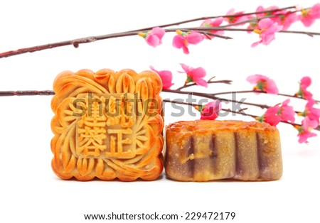 Mid-Autumn Festival moon cake - stock photo