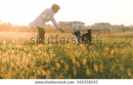 Middle age woman playing with her border collie dog outdoor - stock photo