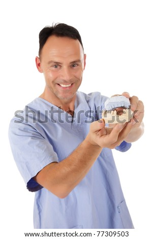 Middle aged caucasian male doctor dentist pointing with a pen to a plaster cast. Studio shot. White background - stock photo