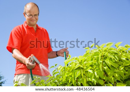 Middle-aged man watering plants - stock photo