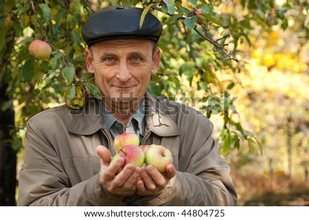 Middle-aged man with apples stand near apple-tree