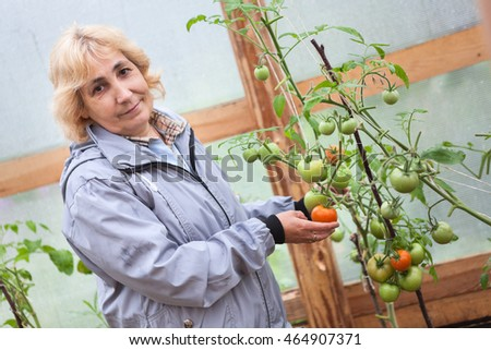 Middle aged woman standing in greenhouse with green and red tomatoes growing on branches