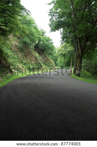 middle of a road in the Ardennes (Luxembourg) in shady ambiance