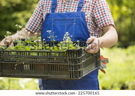 Midsection of man holding crate of potted plants at garden - stock photo