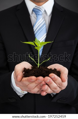 Midsection of young businessman holding sapling representing growth