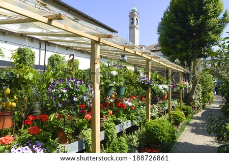 MILAN, ITALY-APRIL 09, 2014: hanging basket of flowers and variety of flowers plants on display in the garden shop, Vivaio Riva, in Milan.