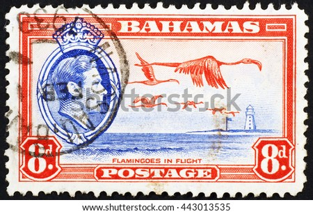 Milan, Italy - January 08, 2014: Flying flamingos on old postage stamp of Bahamas