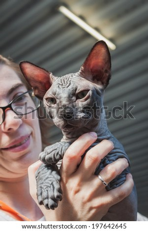 MILAN, ITALY - JUNE 7: Beautiful cat at Quattrozampeinfiera, event and activities dedicated to dogs, cats and their owner on JUNE 7, 2014 in Milan.