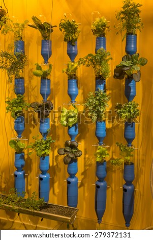 MILAN, ITALY - May 7:indoor cultivation in German pavilion,  detail of vertical gardening inside German Pavilion , shot  on may 7 2015  Milan, Italy  - stock photo