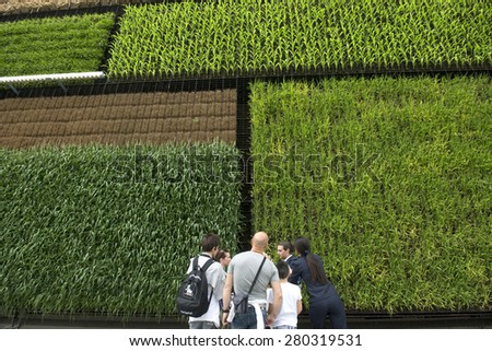 MILAN, ITALY-MAY 04, 2015: vertical green plantations on the Israel pavillion at EXPO 2015, food is the main topic of this italian edition, in Milan.