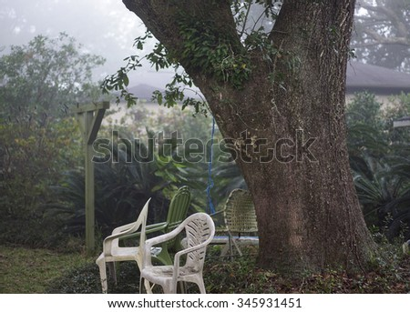 Mildewed plastic chairs surround a gigantic live oak tree with resurrection fern growth in dense atmospheric fog in a typical inner city backyard in the Deep South USA. - stock photo