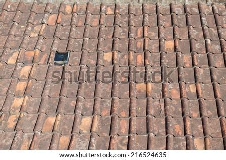 mildewed terracotta roof tile - stock photo