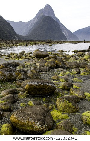 Milford Sound in New Zealand - stock photo