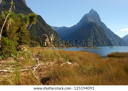 Milford Sound in New Zealand, view from the land - stock photo