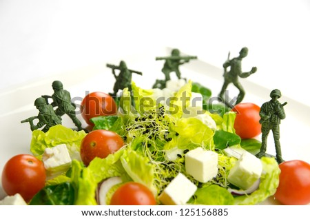 Military toy soldiers defending healthy food, the weight loss war - stock photo