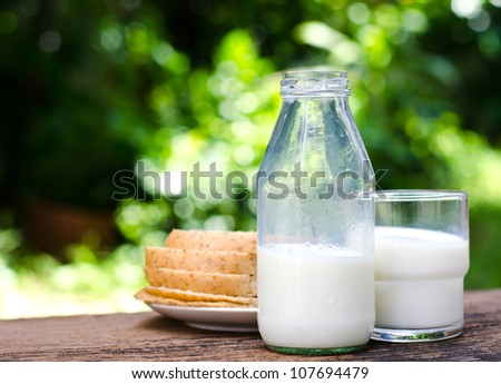 Milk and bread on wooden table in garden - stock photo