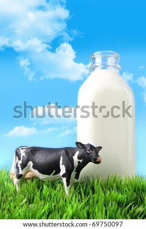 Milk bottle in the grass with blue sky - stock photo