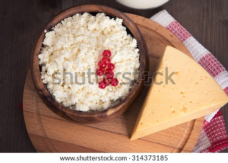 milk, cheese and cottage cheese close up - stock photo